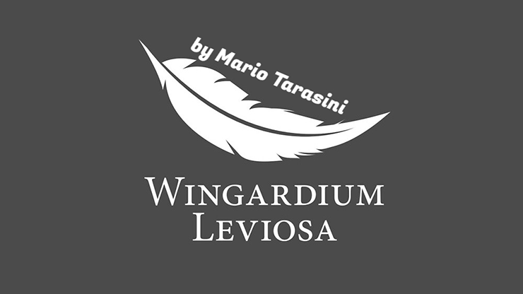 Wingardium Leviosa by Mario Tarasini video DOWNLOAD